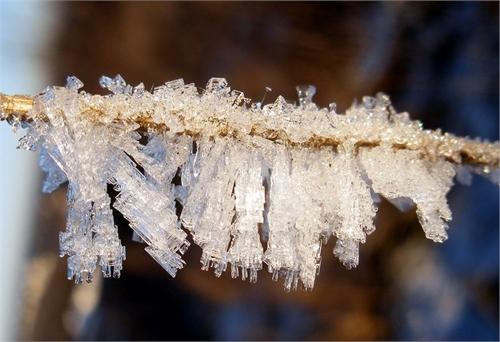 выращиваем кристаллы дома из соли