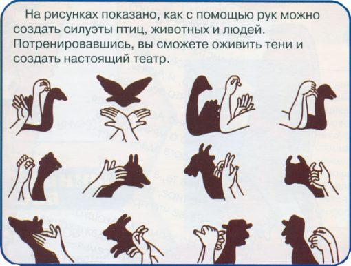 театр теней руками