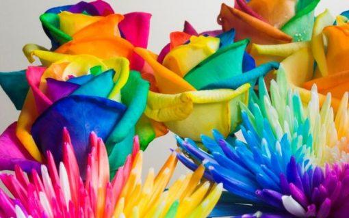 окрашивание живого цветка